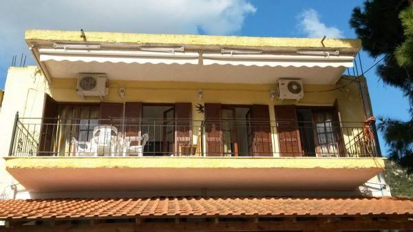 Aloni House